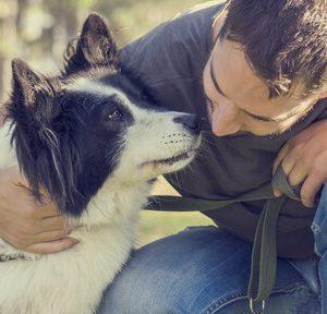 Lavorare con gli animali: attitudine, carattere e formazione